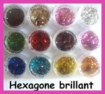 Pot d'hexagones brillants pour Nail Art  (12 couleurs)
